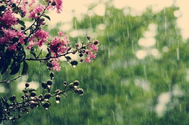 İstirahət gününün havası: Şimşək, yağış, dolu