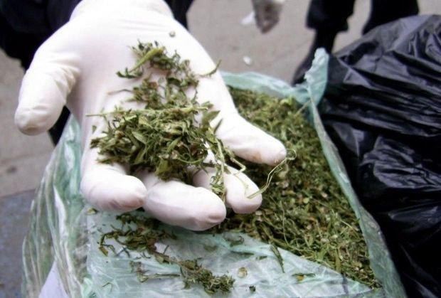 Balakəndə külli miqdarda narkotik vasitə dövriyyədən çıxarıldı - FOTO