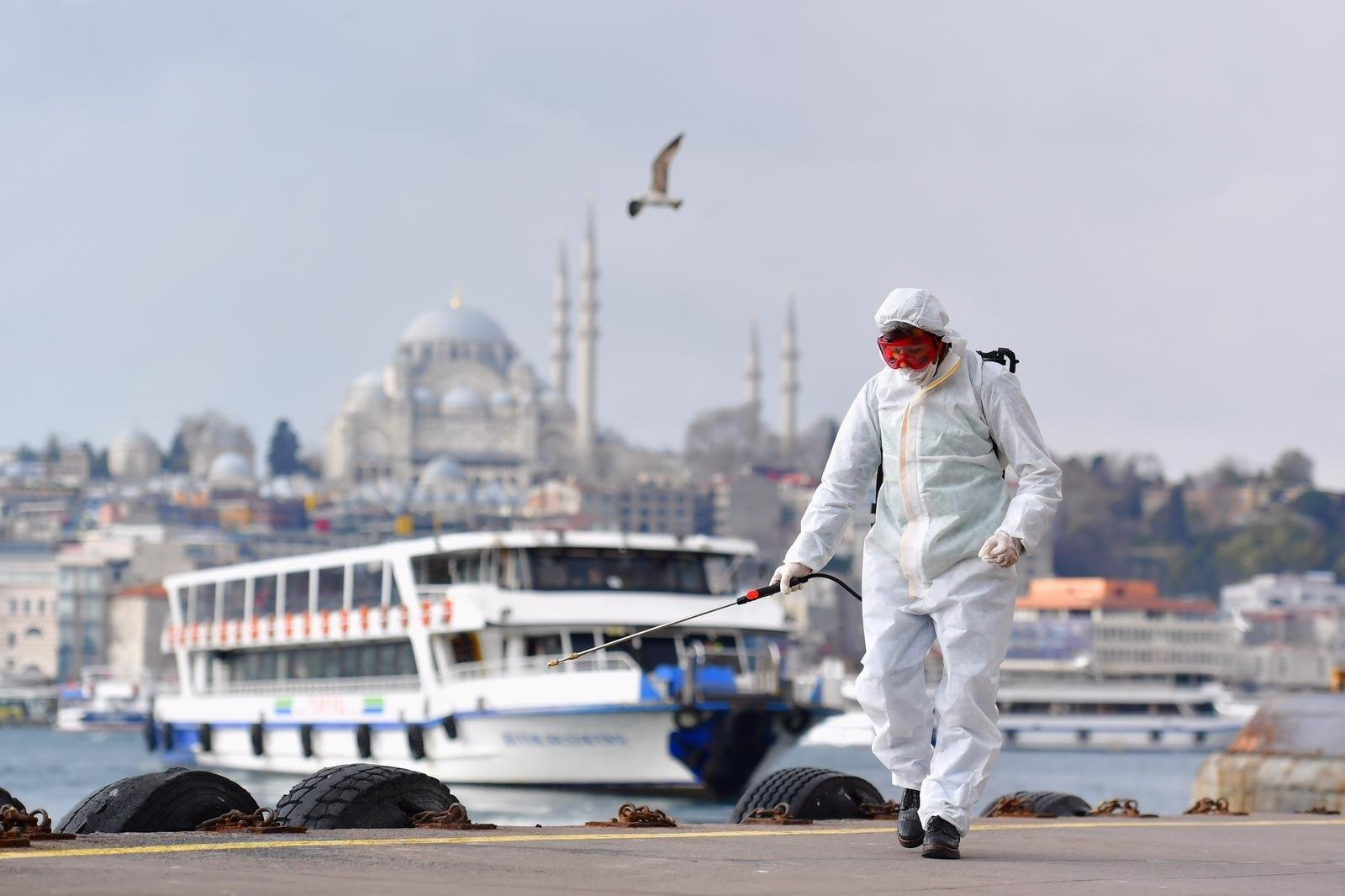 Türkiyədə koronavirus xəstələrinin sayı 229,9 minə çatır
