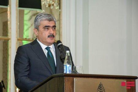 """""""Bir çox ölkədə ÜDM-də azalma ikirəqəmlidir, Azərbaycanda vəziyyət bir qədər yaxşıdır"""" - Nazir"""